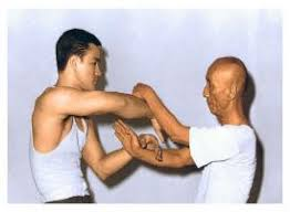 2018 Web Ip Man & Bruce Lee Chi Sao